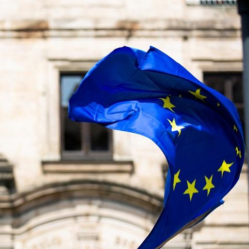 digital skills y europa