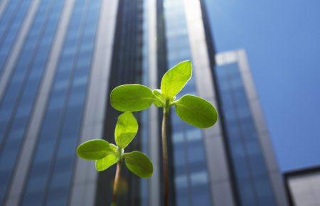 medio ambiente, economia circular y sostenibilidad